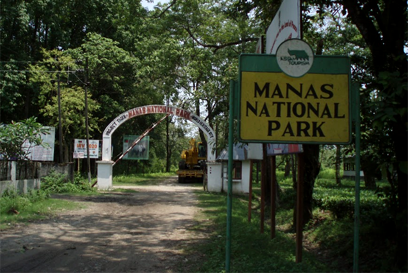 manas national park.png