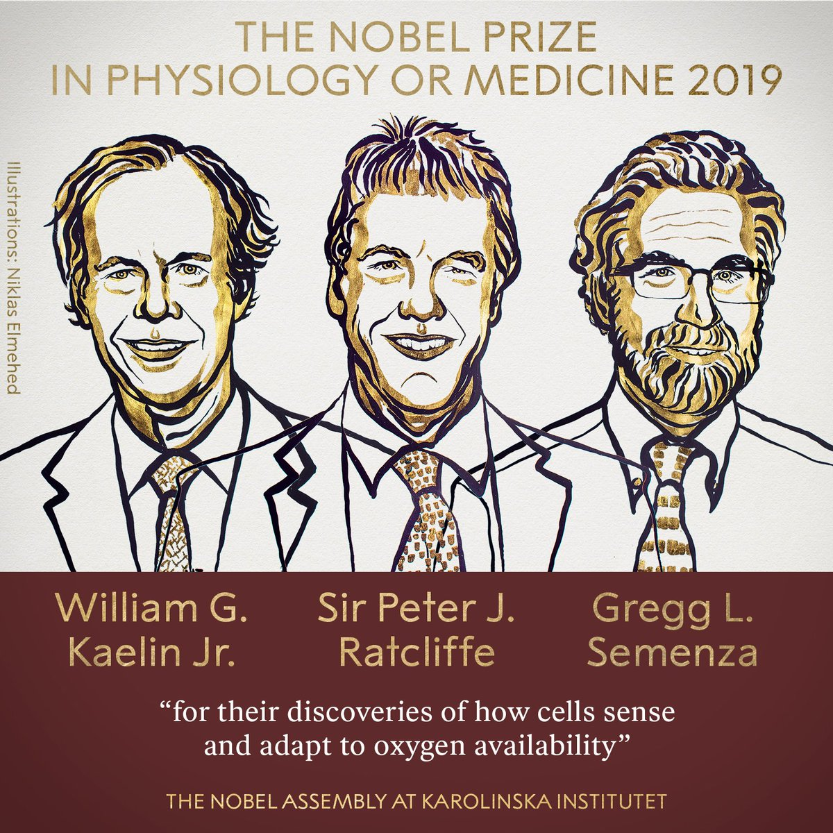 Nobel Prize Winners 2019– Physiology or Medicine